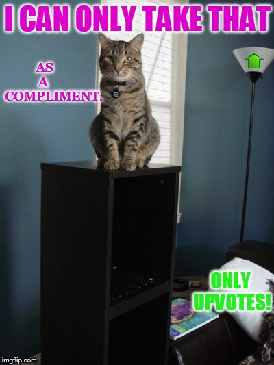 I CAN ONLY TAKE THAT ONLY UPVOTES! AS      A        COMPLIMENT. | made w/ Imgflip meme maker