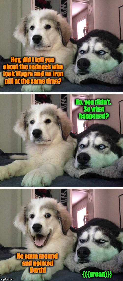 Bad Redneck Joke Between Friends | Hey, did I tell you about the redneck who took Viagra and an iron pill at the same time? He spun around and pointed North! No, you didn't. S | image tagged in bad pun dogs | made w/ Imgflip meme maker