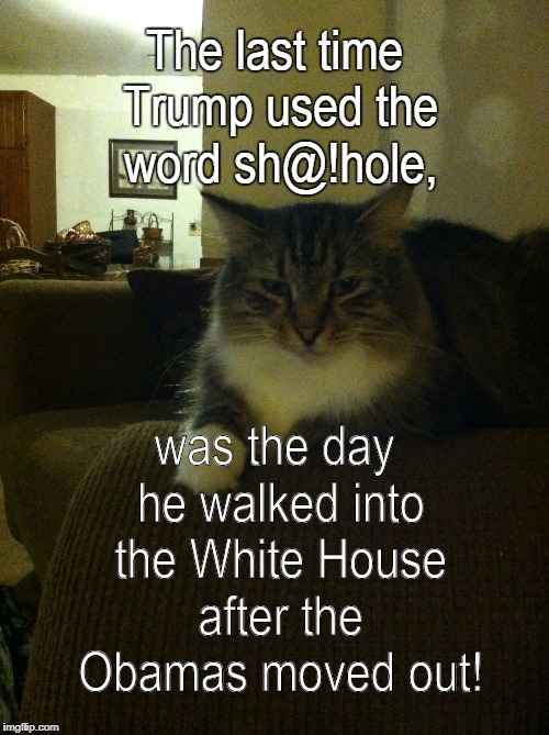 The last time Trump used the word sh@!hole, was the day he walked into the White House after the Obamas moved out! | image tagged in the princess | made w/ Imgflip meme maker