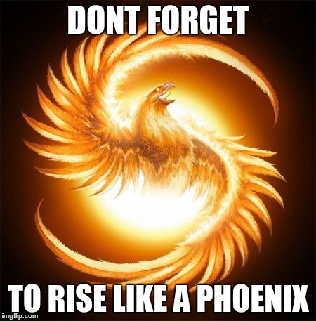 Phoenix Rising | DONT FORGET TO RISE LIKE A PHOENIX | image tagged in phoenix rising | made w/ Imgflip meme maker