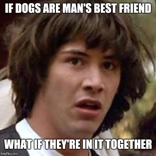 IF DOGS ARE MAN'S BEST FRIEND WHAT IF THEY'RE IN IT TOGETHER | made w/ Imgflip meme maker