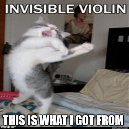 Invisible Violin | THIS IS WHAT I GOT FROM | image tagged in violin | made w/ Imgflip meme maker