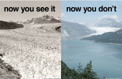 now you see it | image tagged in memes | made w/ Imgflip meme maker
