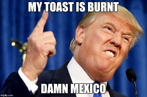Donald Trump | MY TOAST IS BURNT DAMN MEXICO | image tagged in donald trump | made w/ Imgflip meme maker