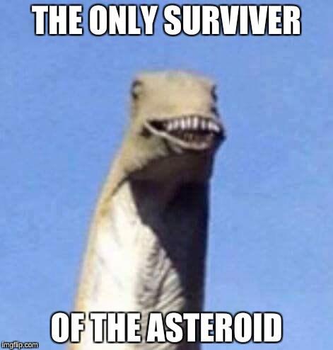 Dino Yee | THE ONLY SURVIVER OF THE ASTEROID | image tagged in dino yee | made w/ Imgflip meme maker