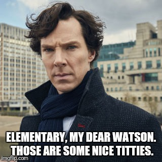 ELEMENTARY, MY DEAR WATSON. THOSE ARE SOME NICE TITTIES. | made w/ Imgflip meme maker