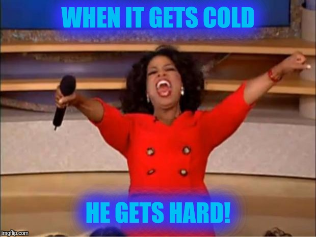 Oprah You Get A Meme | WHEN IT GETS COLD HE GETS HARD! | image tagged in memes,oprah you get a | made w/ Imgflip meme maker