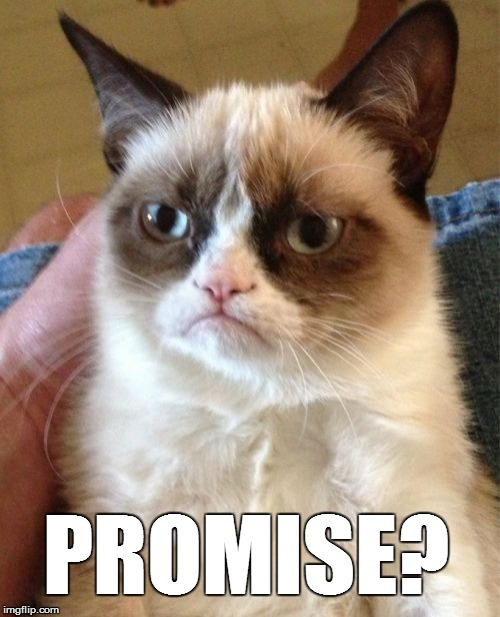 Grumpy Cat Meme | PROMISE? | image tagged in memes,grumpy cat | made w/ Imgflip meme maker