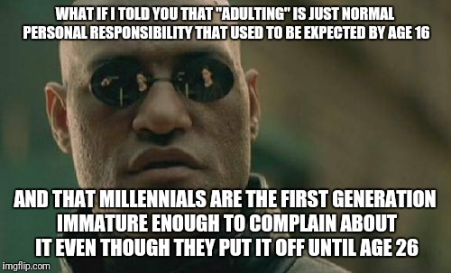 "Matrix Morpheus Meme | WHAT IF I TOLD YOU THAT ""ADULTING"" IS JUST NORMAL PERSONAL RESPONSIBILITY THAT USED TO BE EXPECTED BY AGE 16 AND THAT MILLENNIALS ARE THE FI 