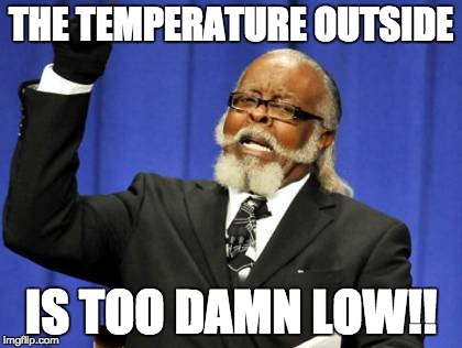 Too Damn High Meme | THE TEMPERATURE OUTSIDE IS TOO DAMN LOW!! | image tagged in memes,too damn high | made w/ Imgflip meme maker