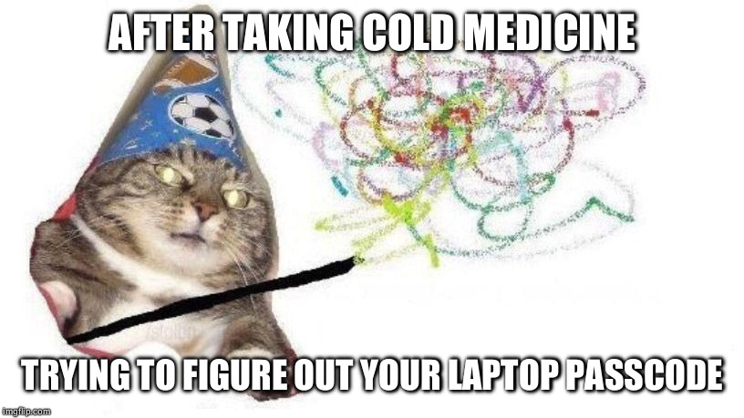 AFTER TAKING COLD MEDICINE TRYING TO FIGURE OUT YOUR LAPTOP PASSCODE | image tagged in wizard cat | made w/ Imgflip meme maker