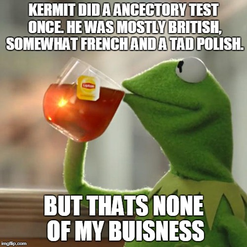 None of my buisness | KERMIT DID A ANCECTORY TEST ONCE. HE WAS MOSTLY BRITISH, SOMEWHAT FRENCH AND A TAD POLISH. BUT THATS NONE OF MY BUISNESS | image tagged in memes,kermit the frog,none of my business | made w/ Imgflip meme maker