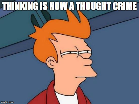 Futurama Fry Meme | THINKING IS NOW A THOUGHT CRIME | image tagged in memes,futurama fry | made w/ Imgflip meme maker
