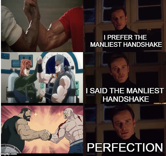 THE MANLIEST HANDSHAKE | I PREFER THE MANLIESTHANDSHAKE PERFECTION I SAID THE MANLIEST HANDSHAKE | image tagged in perfection | made w/ Imgflip meme maker