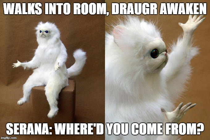 Persian Cat Room Guardian Meme | WALKS INTO ROOM, DRAUGR AWAKEN SERANA: WHERE'D YOU COME FROM? | image tagged in memes,persian cat room guardian | made w/ Imgflip meme maker
