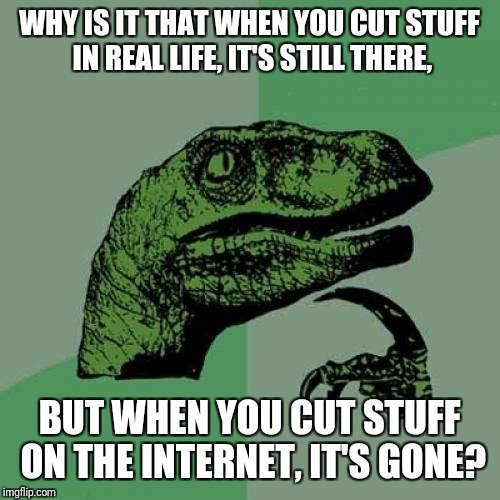 Microsoft: STAY RIGHT WHERE YOU ARE!!! | WHY IS IT THAT WHEN YOU CUT STUFF IN REAL LIFE, IT'S STILL THERE, BUT WHEN YOU CUT STUFF ON THE INTERNET, IT'S GONE? | image tagged in memes,philosoraptor | made w/ Imgflip meme maker