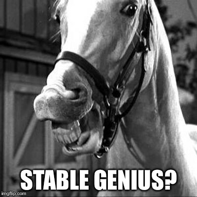 STABLE GENIUS? | image tagged in mr ed | made w/ Imgflip meme maker
