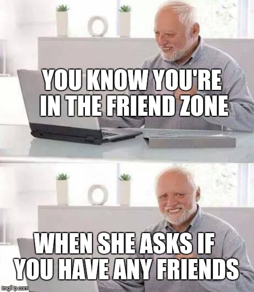 YOU KNOW YOU'RE IN THE FRIEND ZONE WHEN SHE ASKS IF YOU HAVE ANY FRIENDS | made w/ Imgflip meme maker