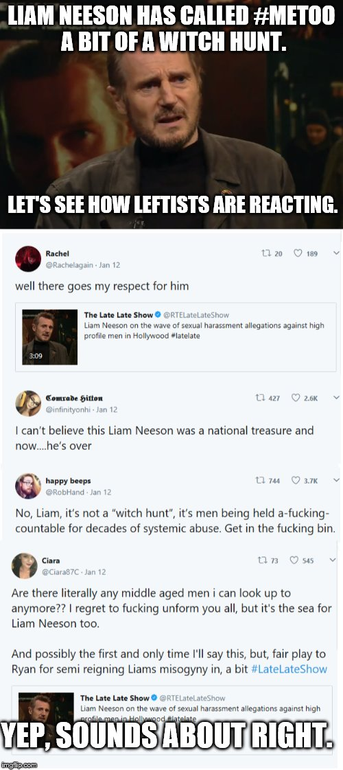 What else did we expect? | LIAM NEESON HAS CALLED #METOO A BIT OF A WITCH HUNT. YEP, SOUNDS ABOUT RIGHT. LET'S SEE HOW LEFTISTS ARE REACTING. | image tagged in liberals,liam neeson,metoo,leftists,twitter | made w/ Imgflip meme maker