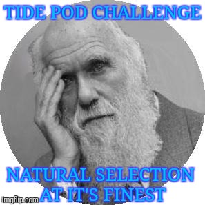 Simple proof of evolution | TIDE POD CHALLENGE NATURAL SELECTION AT IT'S FINEST | image tagged in darwin facepalm,evolution | made w/ Imgflip meme maker