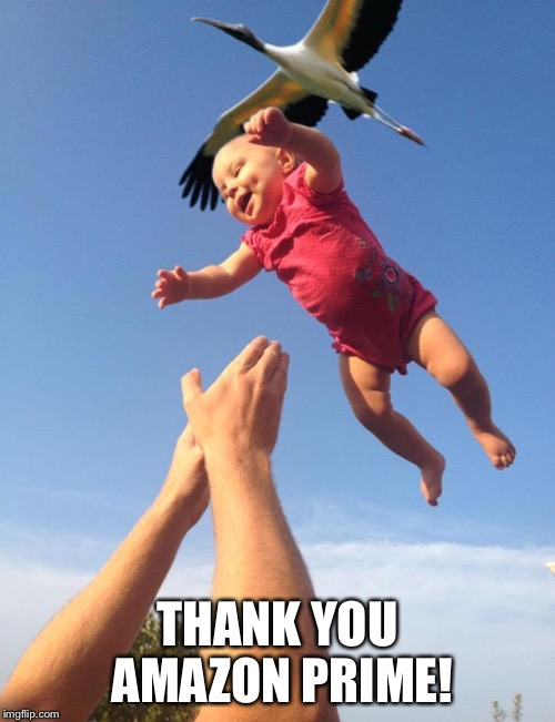 Amazon using storks for deliveries  | THANK YOU AMAZON PRIME! | image tagged in baby,amazon | made w/ Imgflip meme maker
