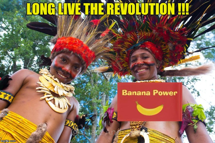 Banana Liberation Front | LONG LIVE THE REVOLUTION !!! | image tagged in banana | made w/ Imgflip meme maker