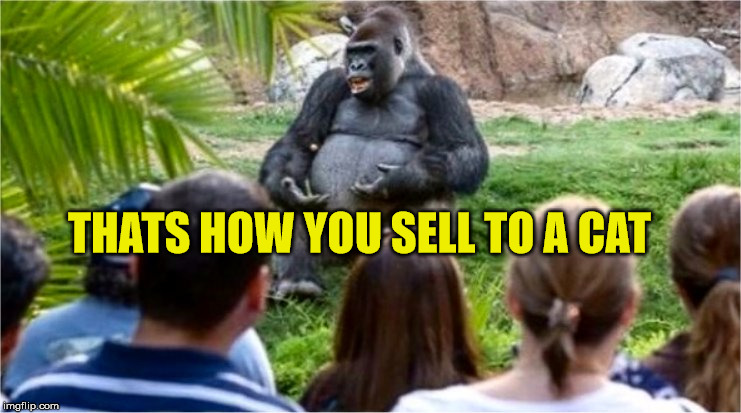 Gorilla Glue | THATS HOW YOU SELL TO A CAT | image tagged in gorilla glue | made w/ Imgflip meme maker