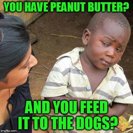 Third World Skeptical Kid Meme | YOU HAVE PEANUT BUTTER? AND YOU FEED IT TO THE DOGS? | image tagged in memes,third world skeptical kid | made w/ Imgflip meme maker