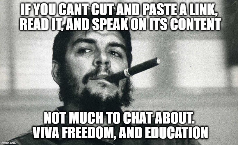 Che | IF YOU CANT CUT AND PASTE A LINK, READ IT, AND SPEAK ON ITS CONTENT NOT MUCH TO CHAT ABOUT. VIVA FREEDOM, AND EDUCATION | image tagged in che | made w/ Imgflip meme maker