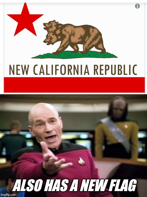 New California State Flag | ALSO HAS A NEW FLAG | image tagged in california,flag | made w/ Imgflip meme maker