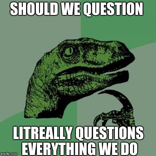 Philosoraptor Meme | SHOULD WE QUESTION LITREALLY QUESTIONS EVERYTHING WE DO | image tagged in memes,philosoraptor | made w/ Imgflip meme maker