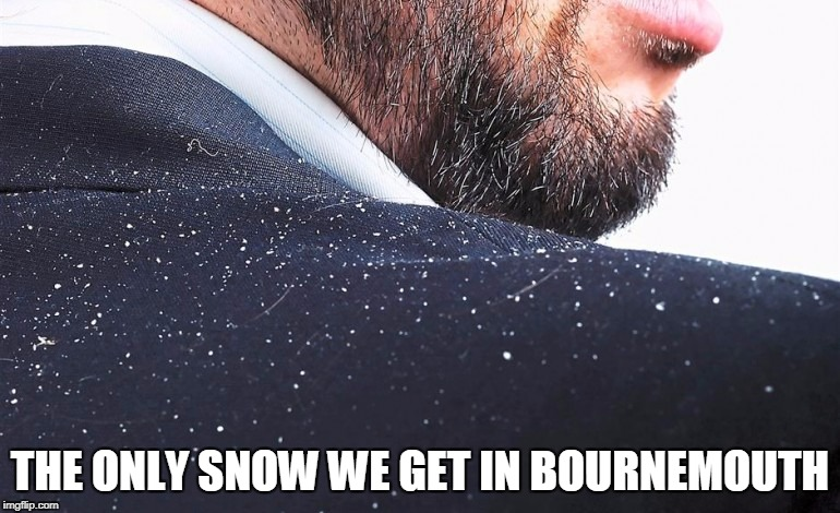 THE ONLY SNOW WE GET IN BOURNEMOUTH | image tagged in snow,bournemouth,dorset,funny,comical,dandruff | made w/ Imgflip meme maker