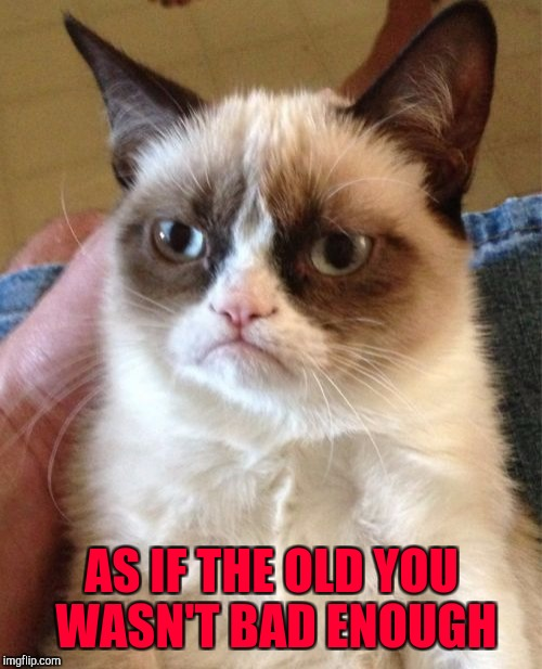 Grumpy Cat Meme | AS IF THE OLD YOU WASN'T BAD ENOUGH | image tagged in memes,grumpy cat | made w/ Imgflip meme maker