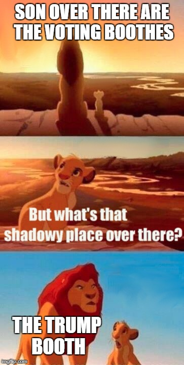 Simba Shadowy Place Meme | SON OVER THERE ARE THE VOTING BOOTHES THE TRUMP BOOTH | image tagged in memes,simba shadowy place | made w/ Imgflip meme maker