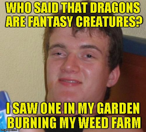 Scumbag dragons!!! Fantasy week,a PowerMetalhead and Woldythekitty event Jan 16th-21st | WHO SAID THAT DRAGONS ARE FANTASY CREATURES? I SAW ONE IN MY GARDEN BURNING MY WEED FARM | image tagged in memes,10 guy,powermetalhead,dragons,fantasy week,weed | made w/ Imgflip meme maker
