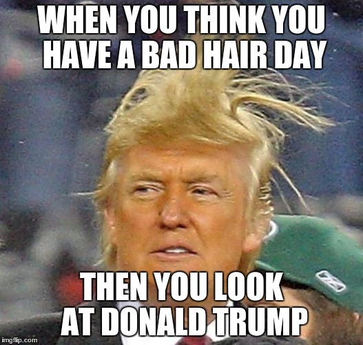 Donald Trump Hair | WHEN YOU THINK YOU HAVE A BAD HAIR DAY THEN YOU LOOK AT DONALD TRUMP | image tagged in donald trump hair | made w/ Imgflip meme maker