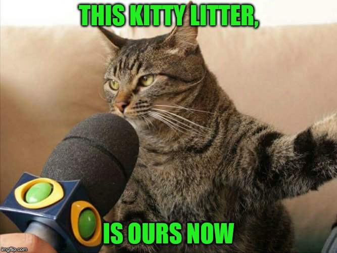 THIS KITTY LITTER, IS OURS NOW | made w/ Imgflip meme maker