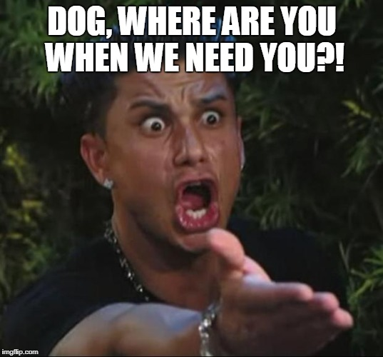 pauly | DOG, WHERE ARE YOU WHEN WE NEED YOU?! | image tagged in pauly | made w/ Imgflip meme maker