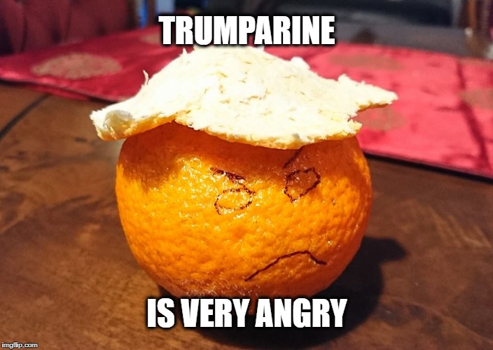 Very Angry. | TRUMPARINE IS VERY ANGRY | image tagged in trumparine,trump,donald trump | made w/ Imgflip meme maker