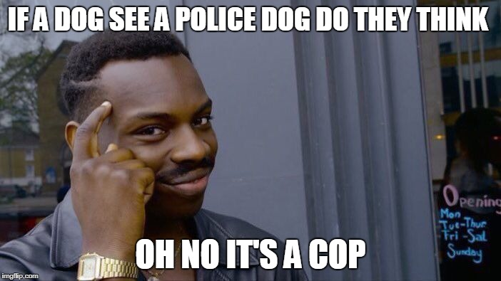 Roll Safe Think About It Meme | IF A DOG SEE A POLICE DOG DO THEY THINK OH NO IT'S A COP | image tagged in memes,roll safe think about it | made w/ Imgflip meme maker