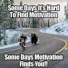 Motivation | image tagged in bear,bike | made w/ Imgflip meme maker