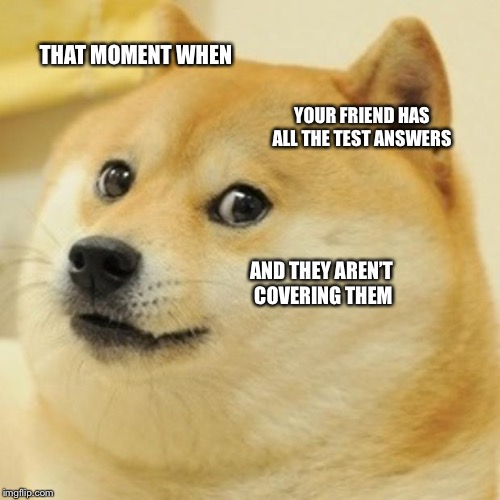 Doge Meme | THAT MOMENT WHEN YOUR FRIEND HAS ALL THE TEST ANSWERS AND THEY AREN'T COVERING THEM | image tagged in memes,doge | made w/ Imgflip meme maker