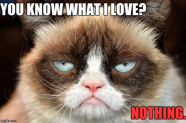 Me, basically | YOU KNOW WHAT I LOVE? NOTHING. | image tagged in memes,grumpy cat not amused,grumpy cat,grumpy cat does not believe,me irl,relatable | made w/ Imgflip meme maker
