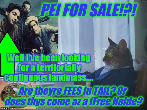 PEI FOR SALE!?! Well I've been looking for a territorially contiguous landmass.... Are theyre FEES in TAIL? Or does thys come az a fFree Hol | made w/ Imgflip meme maker