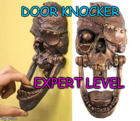 COOL | DOOR KNOCKER EXPERT LEVEL | image tagged in door,knock knock | made w/ Imgflip meme maker