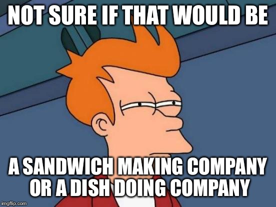 Futurama Fry Meme | NOT SURE IF THAT WOULD BE A SANDWICH MAKING COMPANY OR A DISH DOING COMPANY | image tagged in memes,futurama fry | made w/ Imgflip meme maker