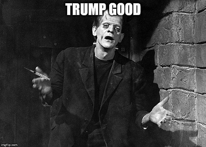 tump | TRUMP GOOD | image tagged in frankenstein | made w/ Imgflip meme maker