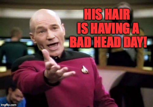 Picard Wtf Meme | HIS HAIR IS HAVING A BAD HEAD DAY! | image tagged in memes,picard wtf | made w/ Imgflip meme maker
