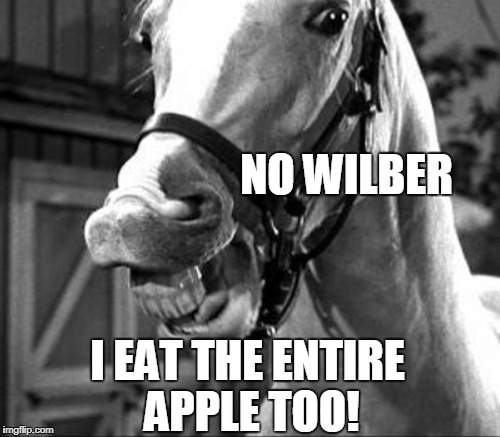 NO WILBER I EAT THE ENTIRE APPLE TOO! | made w/ Imgflip meme maker