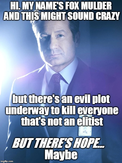 The truth is always out there... | HI. MY NAME'S FOX MULDER AND THIS MIGHT SOUND CRAZY BUT THERE'S HOPE... but there's an evil plot underway to kill everyone that's not an eli | image tagged in x files,fox mulder,x files season 11 | made w/ Imgflip meme maker